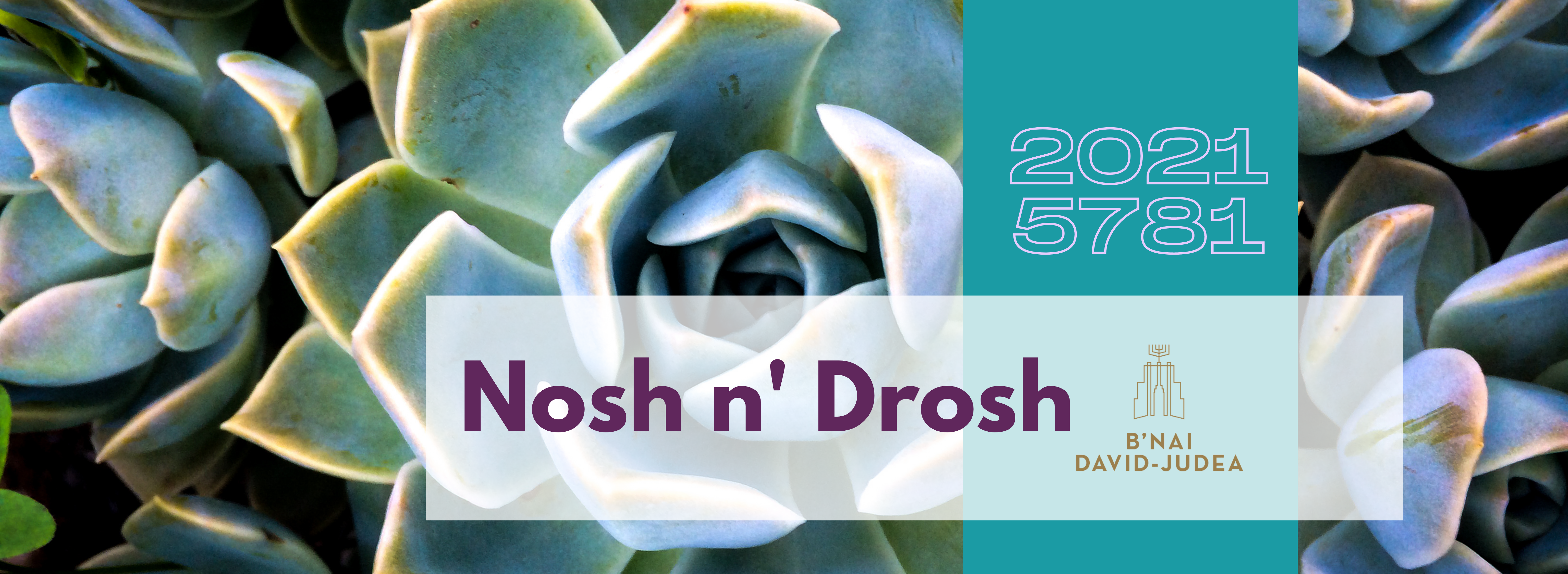 "<a href=""/noshndrosh""                                     target=""_blank"">                                                                 <span class=""slider_title"">                                     Nosh N Drosh                                </span>                                                                 </a>                                                                                                                                                                                      <a href=""/noshndrosh"" class=""slider_link""                             target=""_blank"">                             Join Us!                            </a>"
