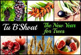 Banner Image for Tu B'Shvat Vegan Seder