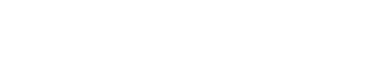 Logo for Thornhill Woods Shul